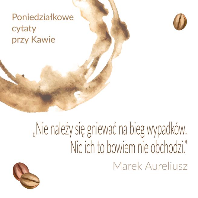 Marek Aureliusz PL_Obszar roboczy 1